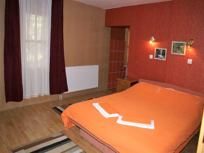 VILLA GOLUBAC Apartments Divcibare - Photo 8