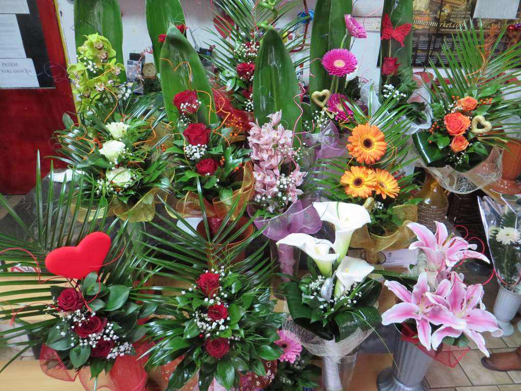 BELA RADA + Flowers and flower shops Sid - Photo 3