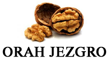 SALE AND PURCHASE OF WALNUT Jagodina