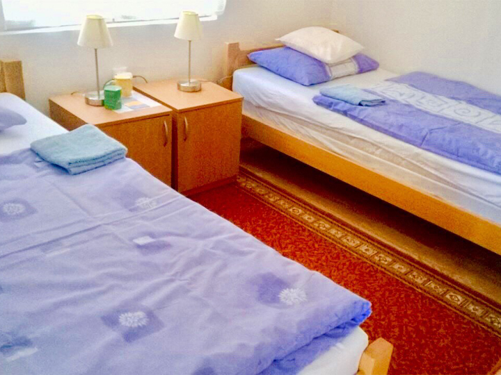 PRIVATE ACCOMMODATION LELA Private accommodation Gornja Trepca - Photo 4