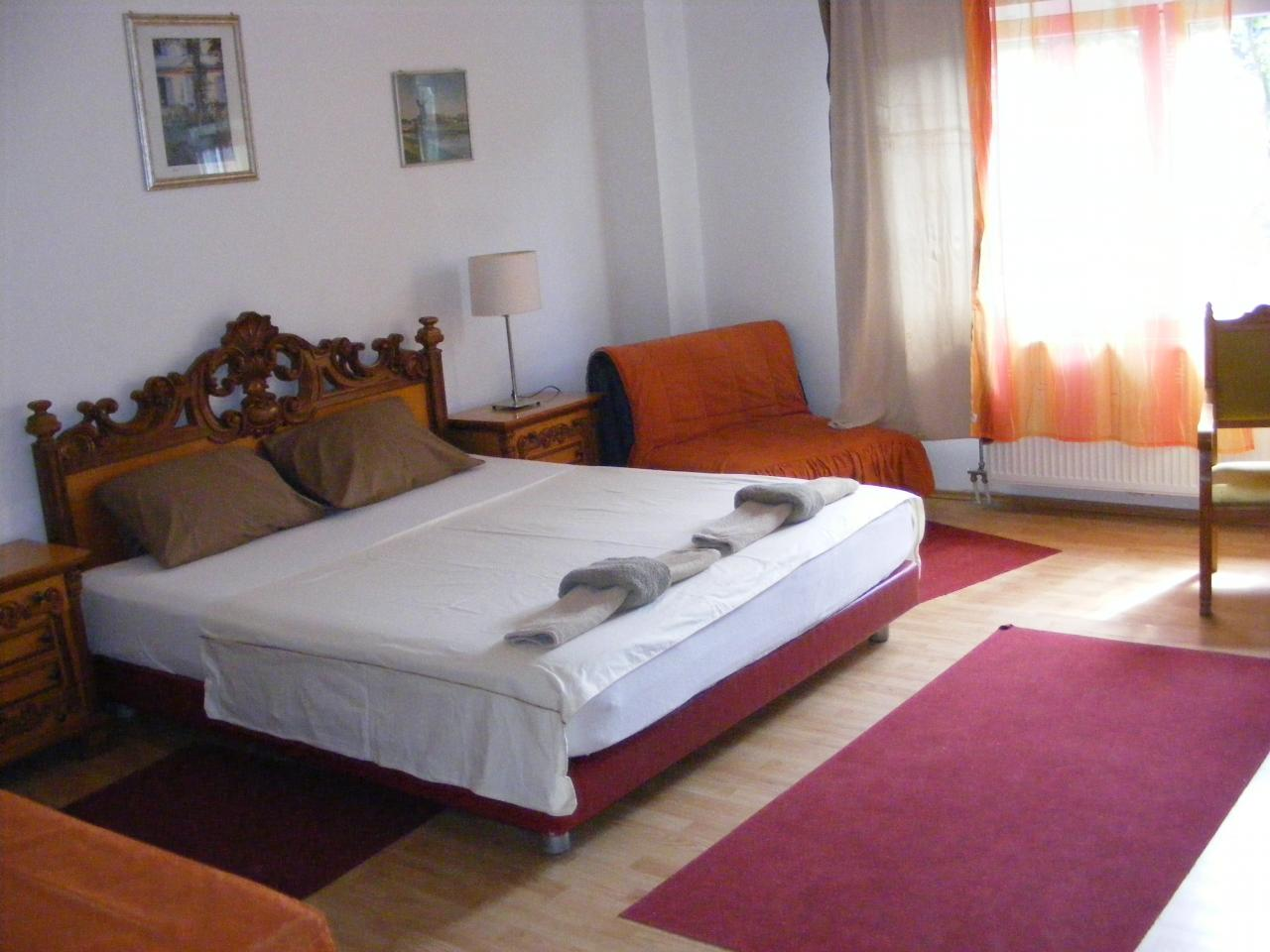 ROOM FOR RENT LUIGI MARIO Renting halls Pancevo - Photo 7