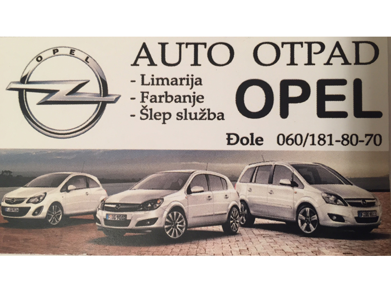 CAR WASTE OPEL AND PEUGEOT Auto parts Uzice - Photo 1