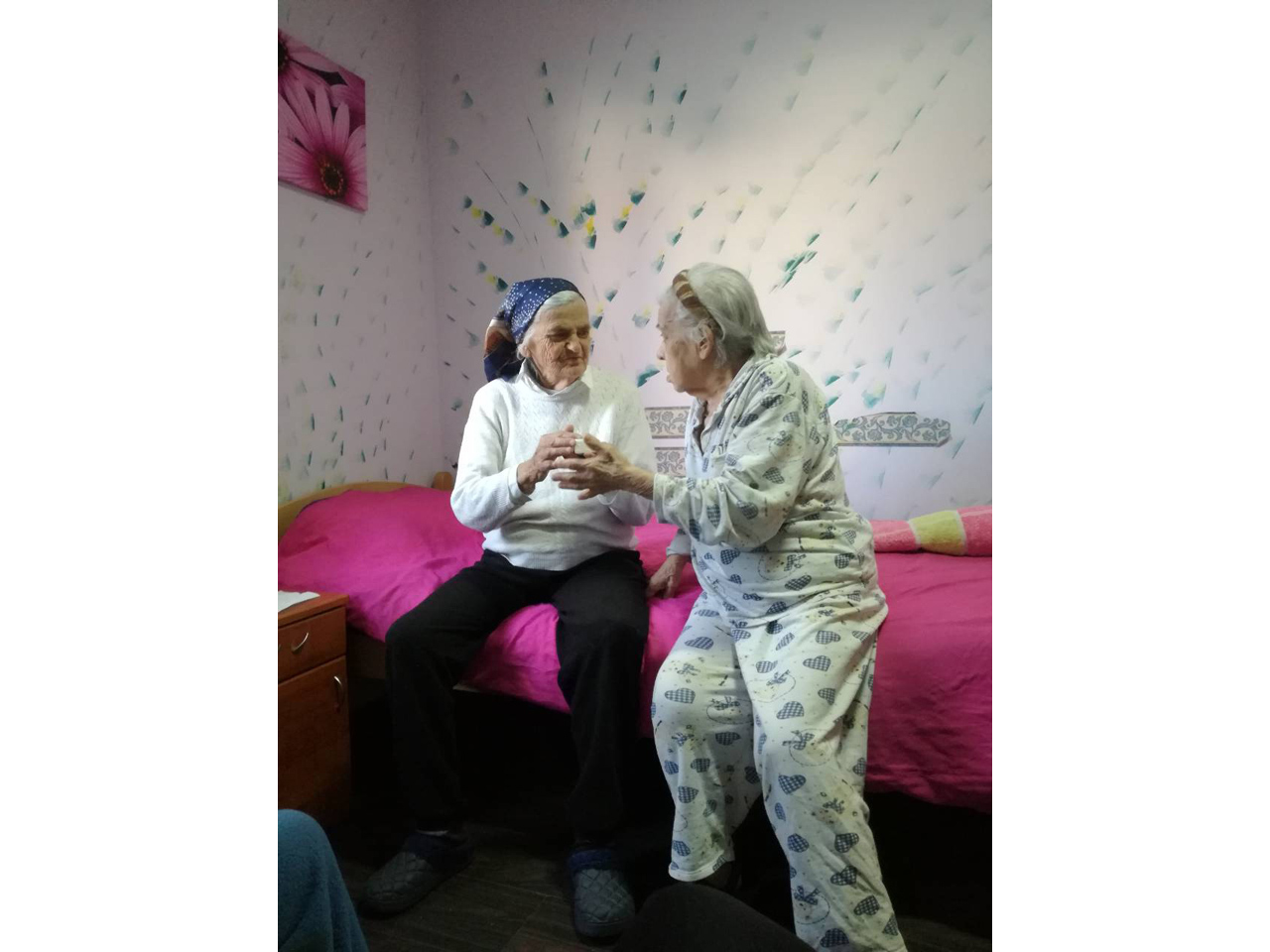 HOME FOR THE ELDERLY PADINA-MACVA Adult care home Sabac - Photo 8