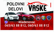 CAR PARTS AND SERVICE VASKE Mladenovac